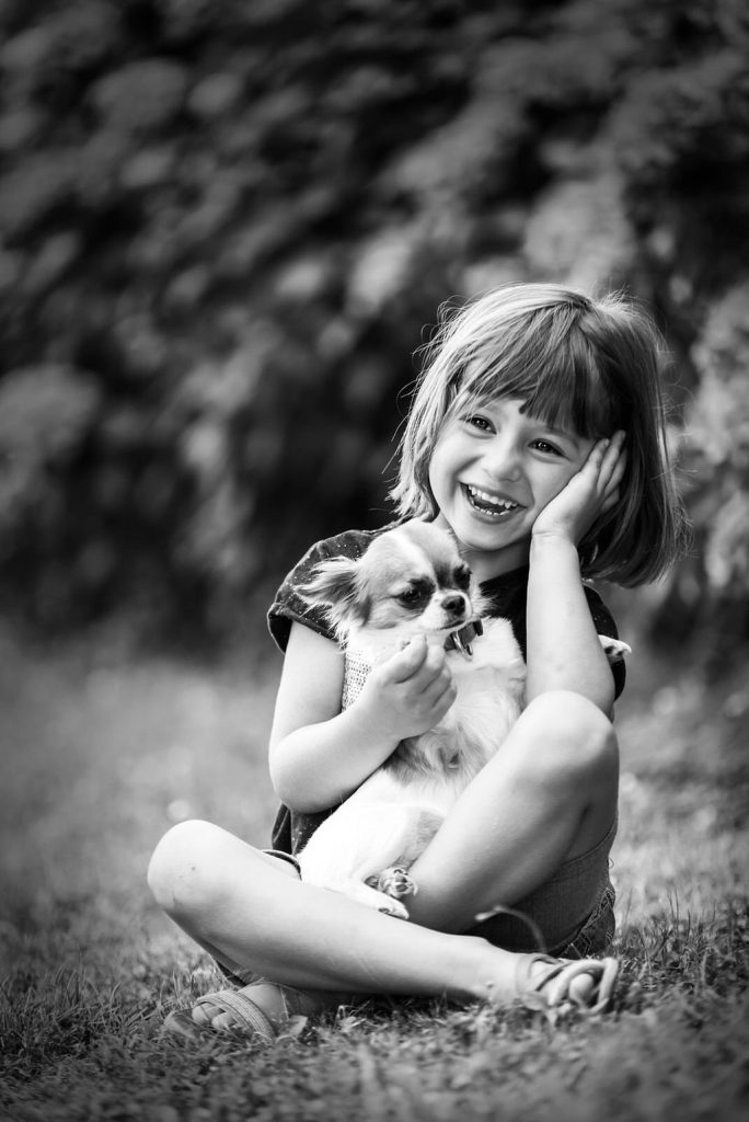 Photo enfant chihuahua - photographe animaliere bayonne