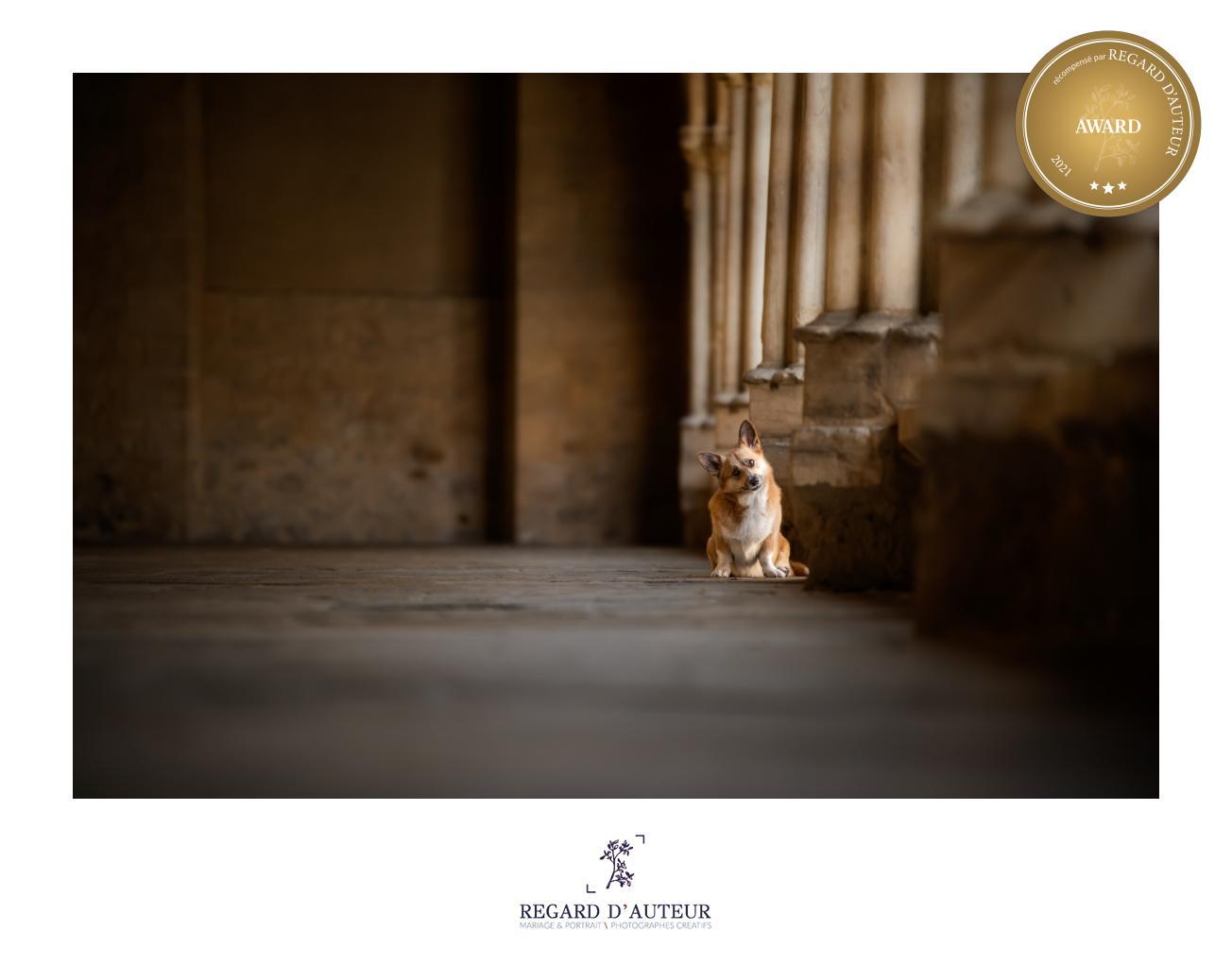 Photographe de portrait à Moulins